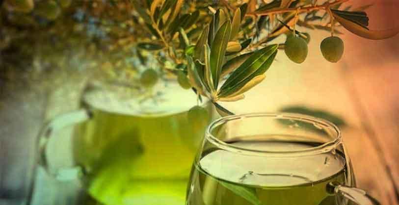 sağlığın-altın-çayı-zeytin-yaprağı-çayının-faydaları-ve-tarifi